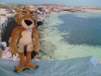 Photo_-_Kal_the_Kalbarri_mascot